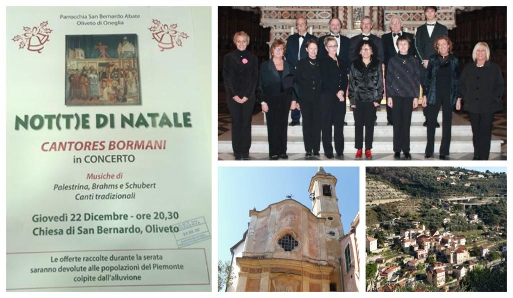 collage_concerto_notedinatale_oliveto