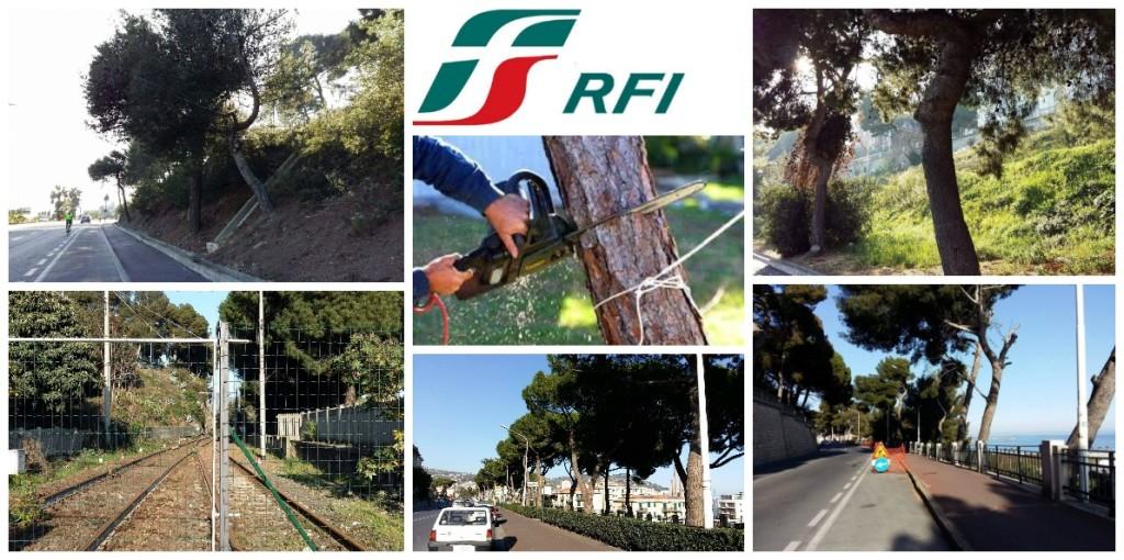 alberi_rfi