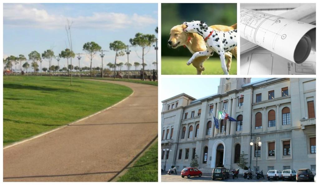 collage_comune cani