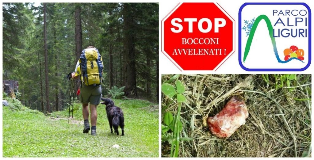 stop_bocconi