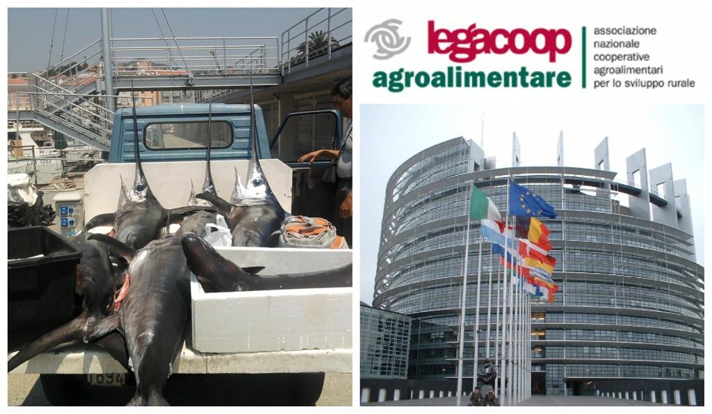 collage_pescespada_legacoopag