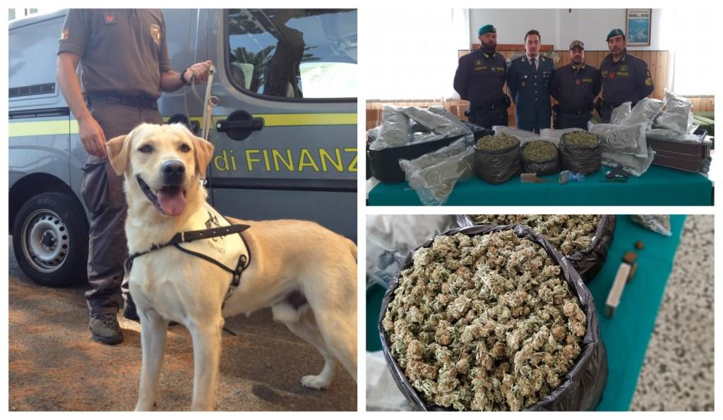 fiananza-arresto-droga-ventimiglia-hashish-marijuana