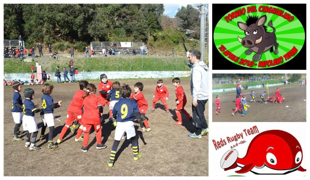 reds-rugby-imperia-torneo-cinghialotto