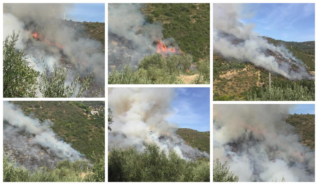 incendio sterpaglie costa 12 settembre (1)