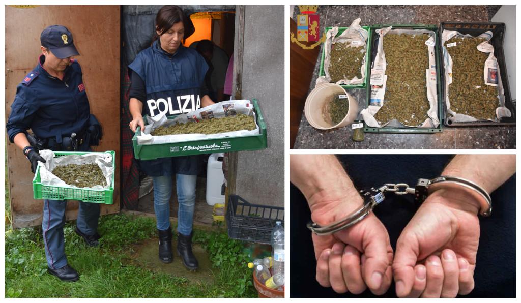 polizia arresto marijuana rocchetta nervina (1)